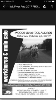 Workhorse &Mule Auction