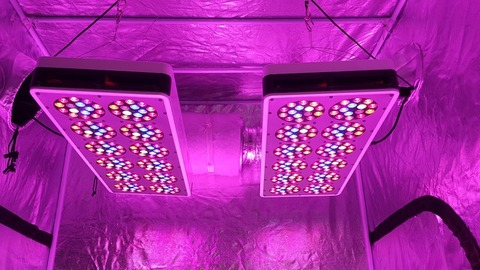 S540 Advanced Spectrum Max Led grow light×2